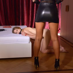 Alexa Tomas in 'Kink Partners' Obedient Delivery (Thumbnail 1)