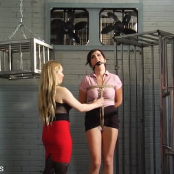 Dixie Comet in 'Kink Partners' Captive In the Dungeon (Thumbnail 3)