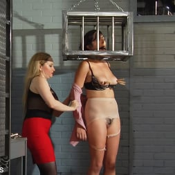 Dixie Comet in 'Kink Partners' Captive In the Dungeon (Thumbnail 15)