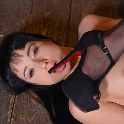 Dolly Diore in 'Kink Partners' MADAM'S TABLE PET (Thumbnail 7)