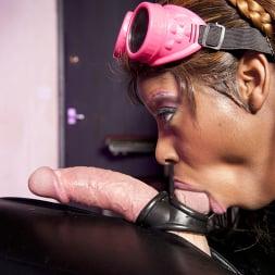 Jasmine Webb in 'Kink Partners' Latex Lezzas and a Horny Gimp (Thumbnail 8)