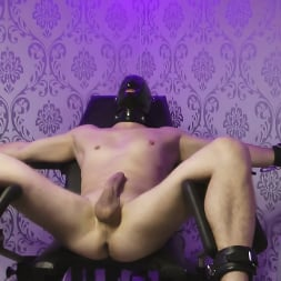 Lady Estelle in 'Kink Partners' - Sexual Dependence (1 of 4) 'Strap-On' (Thumbnail 5)