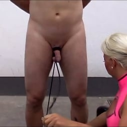 Lady Kate in 'Kink Partners' Lady Kate: The House Slave (2 of 3) (Thumbnail 12)
