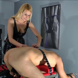 Lady Natalie Black in 'Kink Partners' Lady Natalie Black: Well Hung Fuck Toy (2 of 3) (Thumbnail 3)