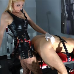 Lady Natalie Black in 'Kink Partners' Lady Natalie Black: Well Hung Fuck Toy (2 of 3) (Thumbnail 6)