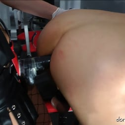 Lady Natalie Black in 'Kink Partners' Lady Natalie Black: Well Hung Fuck Toy (2 of 3) (Thumbnail 8)