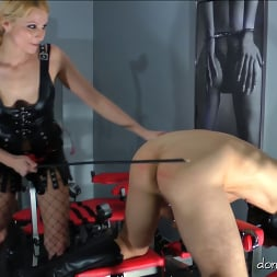 Lady Natalie Black in 'Kink Partners' Lady Natalie Black: Well Hung Fuck Toy (2 of 3) (Thumbnail 20)