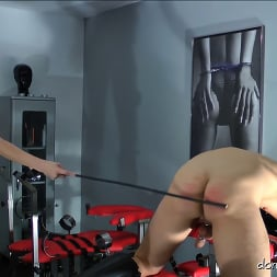 Lady Natalie Black in 'Kink Partners' Lady Natalie Black: Well Hung Fuck Toy (2 of 3) (Thumbnail 23)