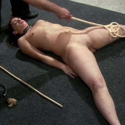 Ten in 'Kink Partners' Figged and Caned (Thumbnail 5)