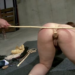 Ten in 'Kink Partners' Figged and Caned (Thumbnail 19)